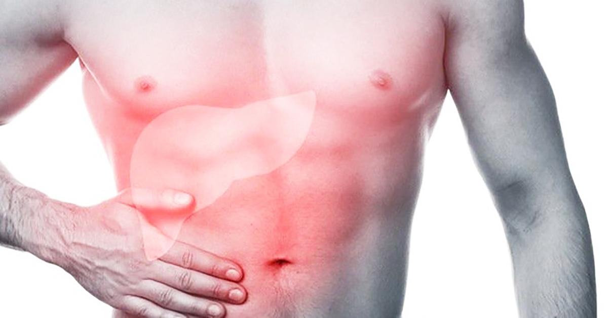 Tìm hiểu chức năng của gan và các bệnh về gan trong y học cổ truyền